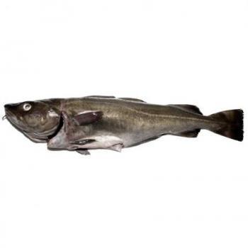 Bacalao - Pescadería Salgado